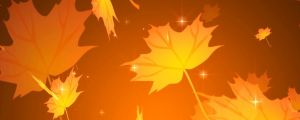 Live Events Stock Media - Autumn Leaves With Stars