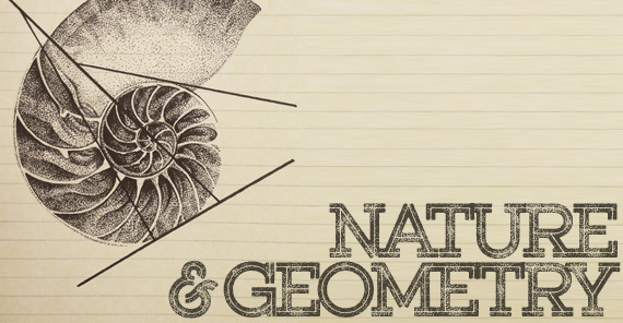 GeoNature Series