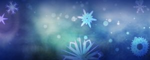 Live Events Stock Media - Windy Snowflakes