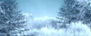 Live Events Stock Media - Winter Landscape Loop 01
