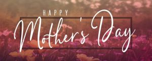 Live Events Stock Media - Wildflower Mother's Day