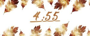 Live Events Stock Media - Thanksgiving Crisp Leaves Countdown