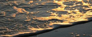 Live Events Stock Media - Sunrise Waves 05