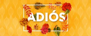 Live Events Stock Media - Colors of Fall Closing Spanish Still