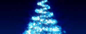 Live Events Stock Media - Christmas Tree 3