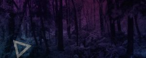 Live Events Stock Media - Warm Pink Snowy Forest Triangles