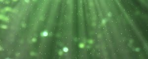 Live Events Stock Media - Abstract Green Nature 03