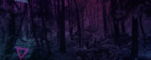 Live Events Stock Media - Warm Pink Snowy Forest Color Triangles