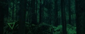 Live Events Stock Media - Dark Green Forest Triangles