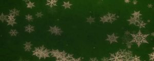 Live Events Stock Media - Christmas Snowflakes 11