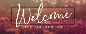 Live Events Stock Media - Wildflower Welcome