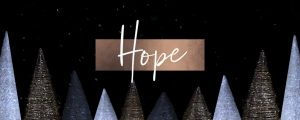 Live Events Stock Media - Glimmer Hope