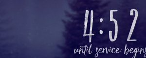 Live Events Stock Media - Secluded Forest Countdown
