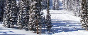 Live Events Stock Media - Snow Still 3