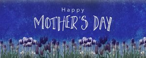 Live Events Stock Media - Mothers Day Tulips Holiday Still