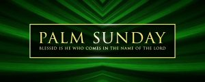 Live Events Stock Media - Palms Palm Sunday