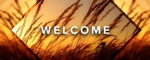 Live Events Stock Media - Autumn Grass Welcome