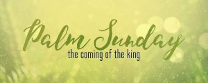 Live Events Stock Media - Easter Week Palm Sunday