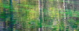 Live Events Stock Media - Mountain Lake Reflections