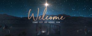 Live Events Stock Media - Starry Night Nativity Welcome