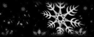 Live Events Stock Media - White Snowflakes