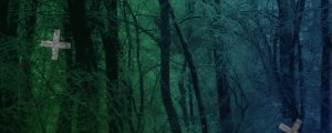 Live Events Stock Media - Blue Green Snowy Forest Crosses