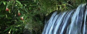 Live Events Stock Media - Waterfall 0603