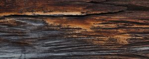 Live Events Stock Media - Weathered Wood