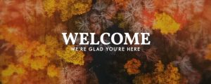 Live Events Stock Media - Aerial Journey Welcome