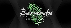 Live Events Stock Media - Palm Leaf Welcome Spanish Still