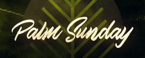 Live Events Stock Media - Particle Rays Palm Sunday Title