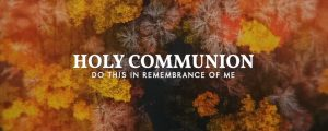 Live Events Stock Media - Aerial Journey Communion