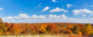 Live Events Stock Media - Brown County Autumn Vista