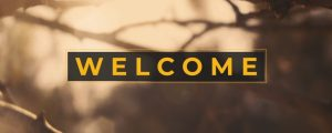 Live Events Stock Media - Autumn Dream Welcome