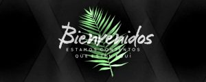 Live Events Stock Media - Palm Leaf Welcome Spanish