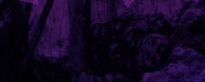 Live Events Stock Media - Purple Forest Big Triangles