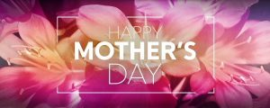 Live Events Stock Media - Flowers for Mom Mothers Day