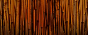 Live Events Stock Media - Texture Bamboo 1