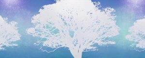 Live Events Stock Media - Tree of Life Blue 02