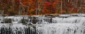 Live Events Stock Media - Autumn at Upper Cataract Falls Loop