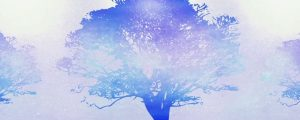 Live Events Stock Media - Tree of Life Blue 01