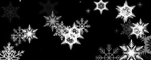 Live Events Stock Media - Intricate white snowflakes on black