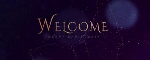 Live Events Stock Media - Sparkly Christmas Welcome