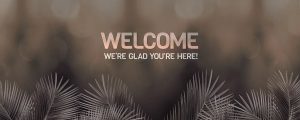 Live Events Stock Media - Heavenly Palm Branches Welcome