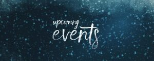 Live Events Stock Media - Snowy Night Events