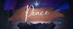 Live Events Stock Media - Christmas Hope Advent Peace