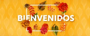 Live Events Stock Media - Colors of Fall Welcome Spanish Still