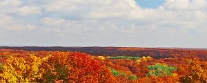 Live Events Stock Media - Autumn Skyscape Timelapse Loop