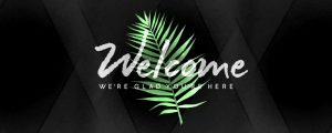 Live Events Stock Media - Palm Leaf Welcome