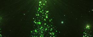 Live Events Stock Media - Christmas Glow Greenery Still